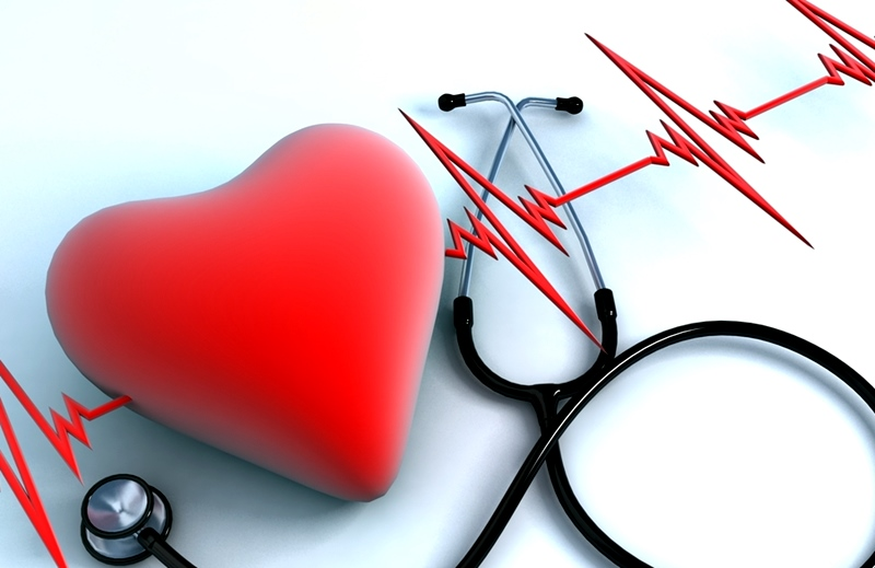 Профилактика болезней сердца в Республике Беларусь