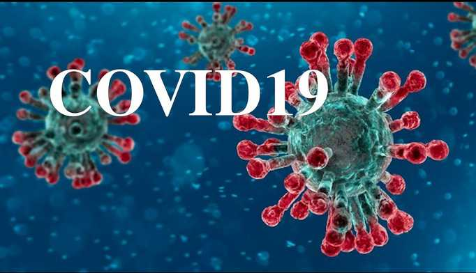 Меры профилактики по недопущению возникновения и распространения коронавирусной инфекции (COVID-19):